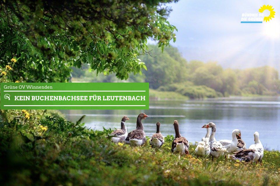 Kein Buchenbachsee für Leutenbach