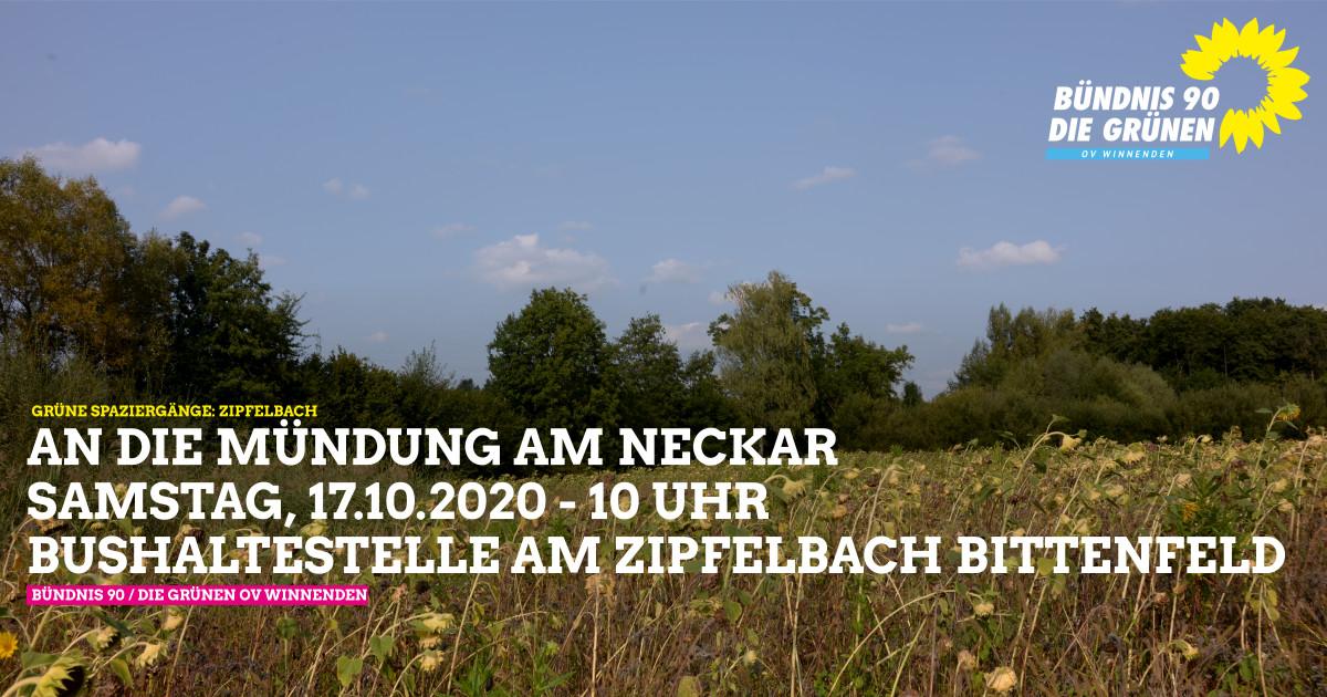 An die Mündung am Neckar